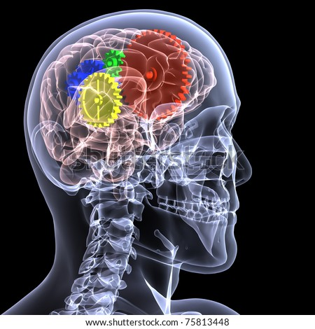 X-Ray of a male skeleton with a series of colored gears in his head, seen through his brain, for the concept of thought. Isolated on a black background - stock photo
