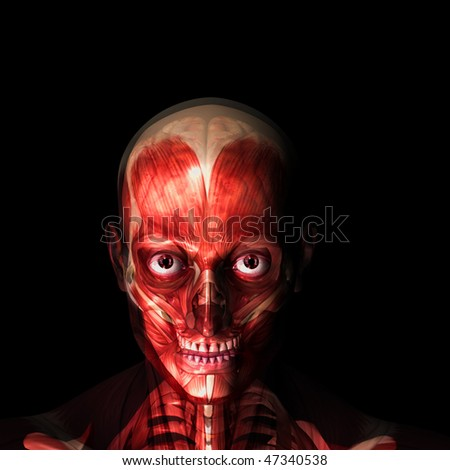 X-Ray of a male skeleton with his muscles and brain displayed with a wet, bloody feel.  Isolated on a black background - stock photo