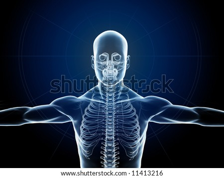 X-Ray of a man showing skeleton - stock photo