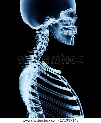 x-ray skeleton r�¶ntgen on black leonardo da vinci - stock photo