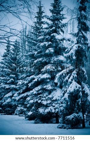 Xmas tree street - stock photo