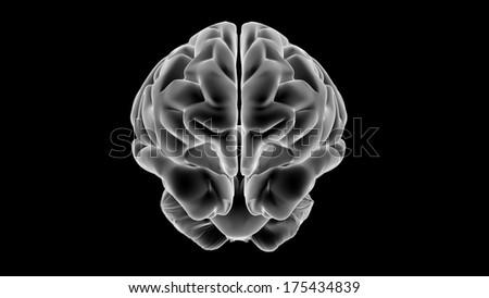 Xray Brain isolated on black background - stock photo