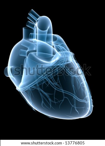 xray heart - stock photo