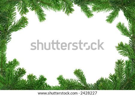 xxl image of spruce twig frame - stock photo