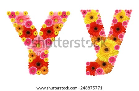 y, flower alphabet - stock photo