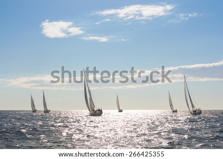 yacht with white sails on the high seas