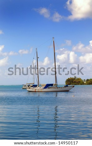 yachts docked at a tropical harbor on a sunny day - stock photo