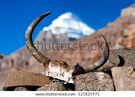 Yak's skull with sacred mountain Mt. Kailash in the background - stock photo