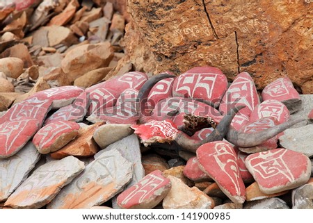 Yak skulls decorated with Buddhist mantras in Tibet  - stock photo