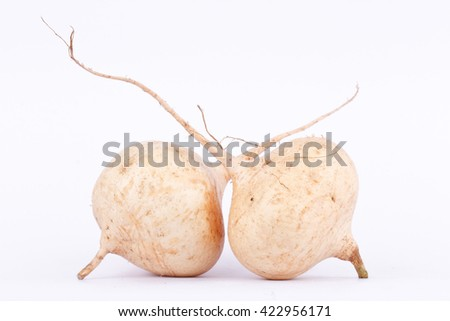 Yam bean ( Jicama ) is bulbous root vegetable fruit food on the white background - stock photo