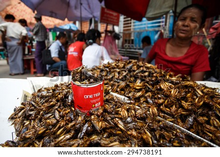 YANGON, MYANMAR - JUNE 12 2015: Lady street vendor selling cockroaches on one of the hottest recorded days before monsoon season in Yangon, Myanmar. - stock photo