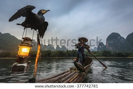 YANGSHUO - DECEMBER 15TH,2015: Chinese man fishing with cormorants birds in Yangshuo, Guangxi region, traditional fishing use trained cormorants to fish, DECEMBER 15TH,2015 Yangshuo in Guangxi, China - stock photo