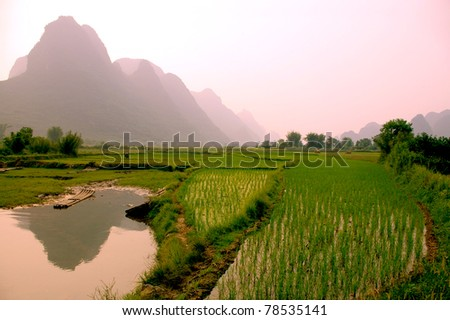 yangshuo landscape - rice field - stock photo