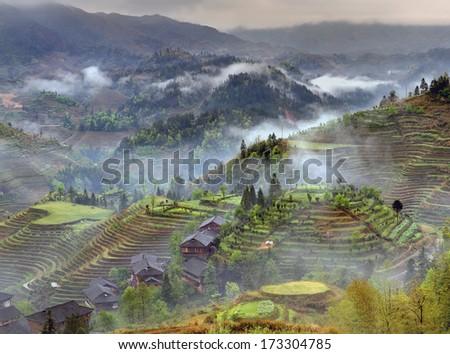 Yao Village Dazhai, Longsheng, near town of Guilin, Guangxi, China. Farmhouses in  highlands of China, farm land, rice terraces. Spring fog in mountains of southwestern China Longsheng rice terraces. - stock photo