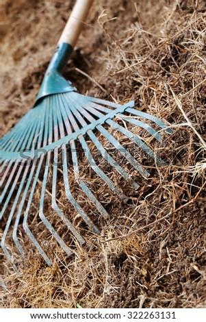 yard work, preparation soil in garden with rake shoveling dry grass - stock photo
