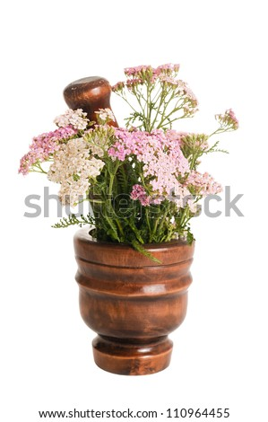 Yarrow in a mortar isolated on white - stock photo