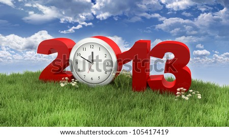 Year 2013 in the Grass under the Sky - stock photo
