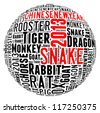 Year of the snake 2013 info-text graphics arrangement concept on white background - stock