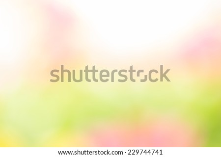 Yellow and green abstract natural background Used for text input - stock photo