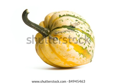Yellow and Green Squash or Gourd isolated on white background - stock photo