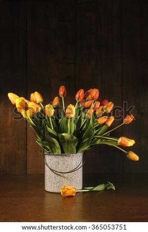 Yellow and orange tulips in old bucket - stock photo