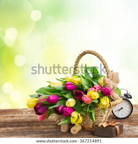 yellow  and purple fresh tulip flowers with retro clock  on wooden table over spring garden background - stock photo