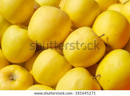 Yellow apples as background