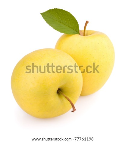 Yellow apples with leaf isolated on white - stock photo