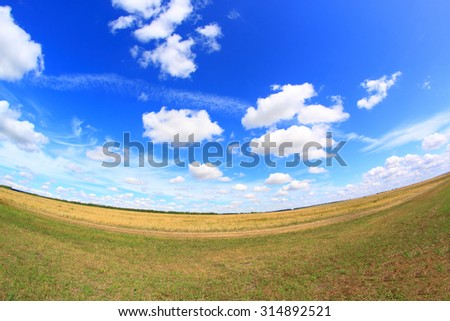 Yellow autumn field and blue sky landscape - stock photo
