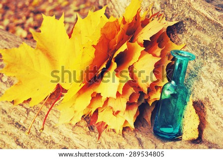 yellow autumn leaves and blue vase - stock photo