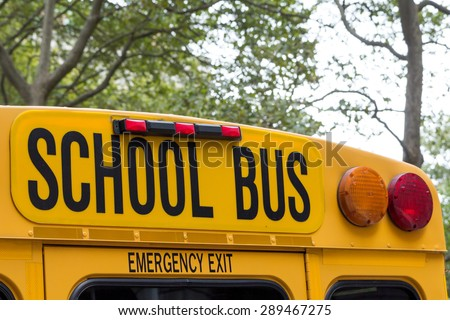 Yellow back of school bus with a sign is standing in the park. Sign School bus is in more than half of photo.
