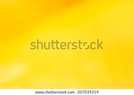 yellow background, countryside, nature, love, fall colors, magical, mysterious, mystical, beautiful, dark, background, colorful, rainbow, brindle, red, orange, autumn, charming - stock photo