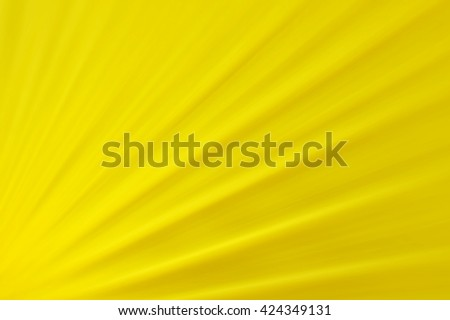 Yellow background, Shiny sunbeams, Bright sunbeams on yellow background, Abstract bright background - stock photo