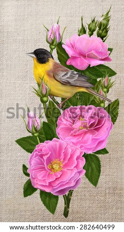 yellow bird on a branch of the tea roses - stock photo
