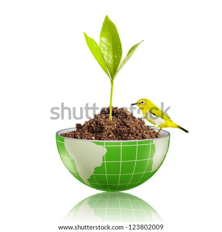 Yellow bird on globe with plant growing on dirt - stock photo