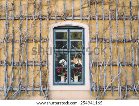 Yellow braided wall with a window in the middle - stock photo