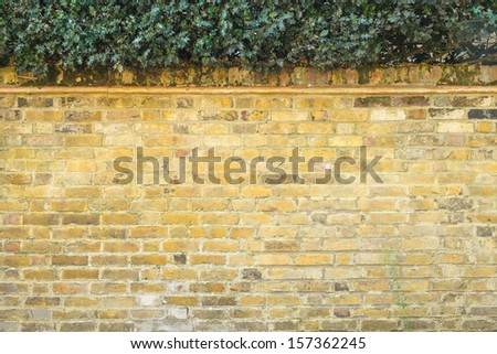 Yellow Brick in London with Leaf - stock photo