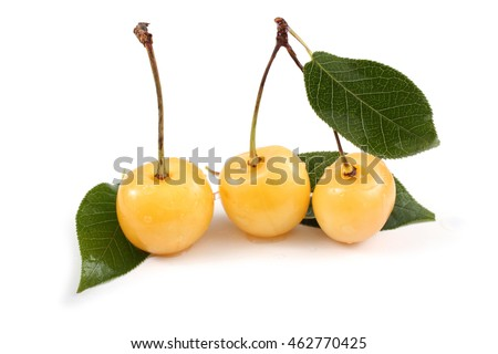 Yellow cherries and leaves
