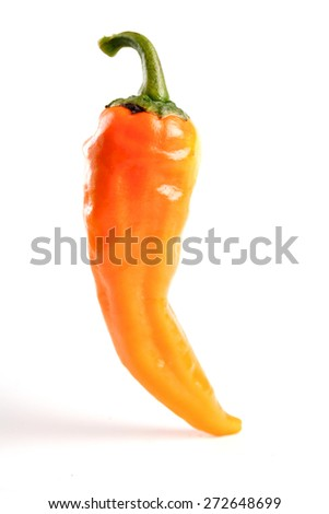 Yellow chilli pepper on white backgroud - stock photo