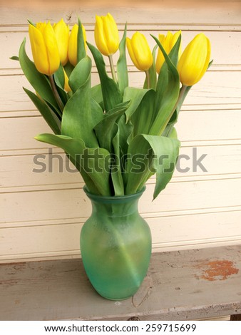 Yellow color tulips in green glass vase       - stock photo