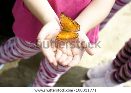 Yellow colored butterfly hop at young girl's hand. - stock photo