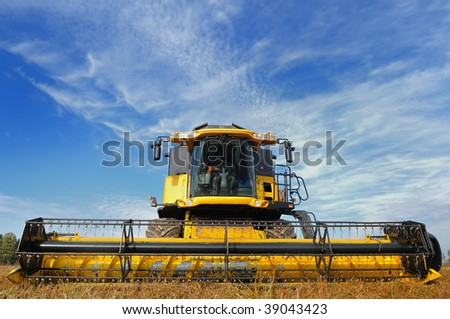 yellow combine in the field of buckwheat over bright cloudy blue sky - stock photo