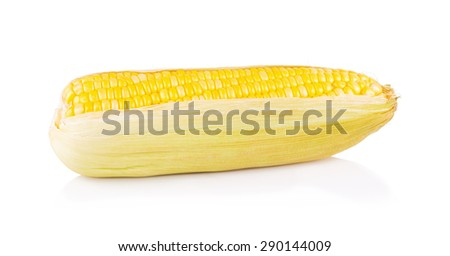 yellow corn isolated on the white - stock photo