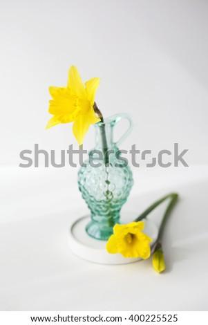 Yellow daffodils in the green glass - stock photo
