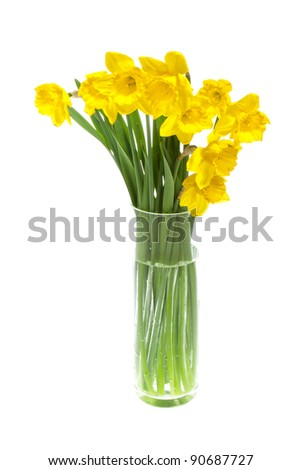 yellow daffodils in vase, isolated on white