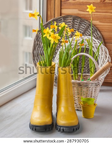 Yellow daffodils in yellow rubber boots on the windowsill - stock photo