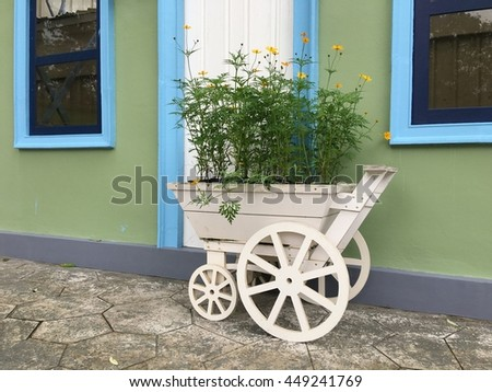 Yellow daisies in white wooden cart pot. Yellow daisies on a green, blurred background. Selective focus on the center of the flower.chamomile flower garden beside wall - stock photo