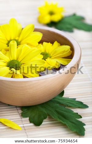 Yellow daisies in wooden bowl. Spa theme - stock photo