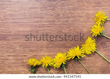 yellow dandelions lying on the wooden background, yellow summer flowers frame of flowers - stock photo