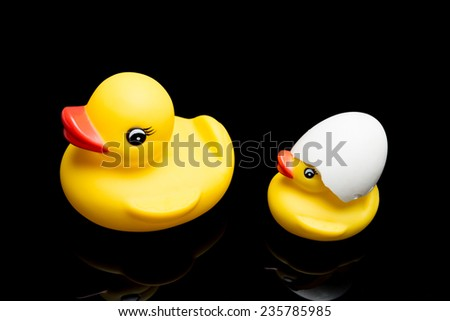 Yellow Duck family - Safety first concept - stock photo
